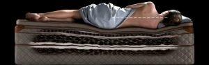 Duxiana Luxury Bed Blog