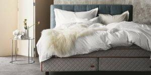 Bed Blog