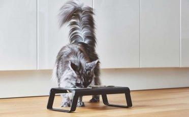 MiaCara Desco Cat Feeder Aluminum body & Powder Coated Black