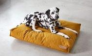 MiaCara Stella Dog Cushion - Danish Design Co Singapore