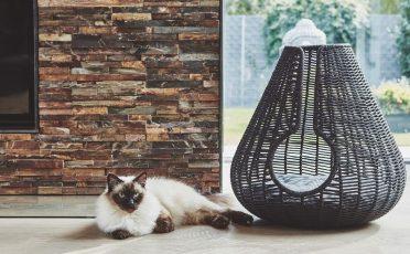 MiaCara Perla Cat Bed in Anthracite with Cat